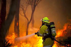Yangın Hortumu Kullanım Alanları